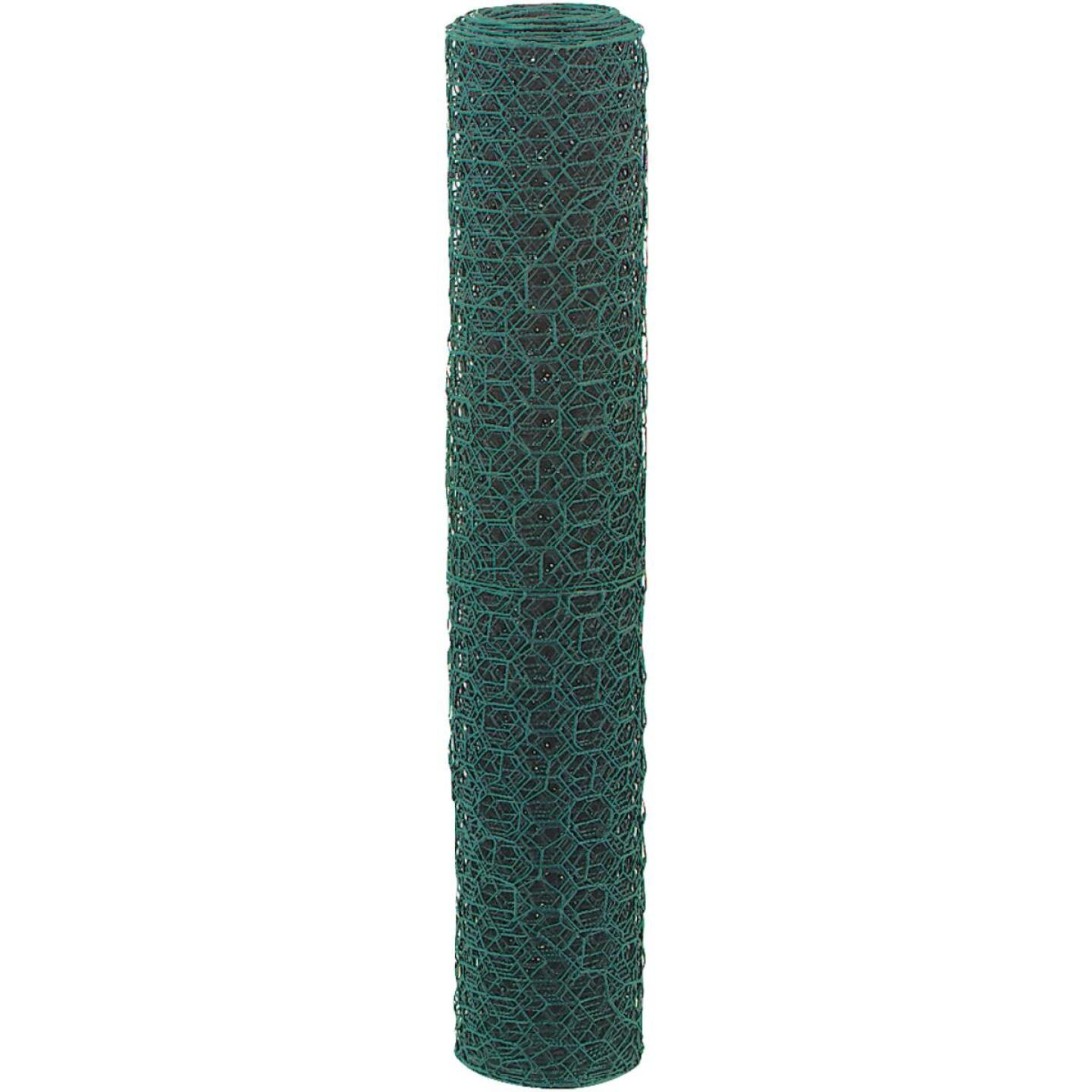 1 In. x 36 In. H. x 25 Ft. L. Green Vinyl-Coated Poultry Netting Image 3